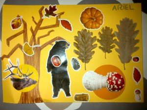 L'automne dans Chapichatons img-20121207-007985-300x225